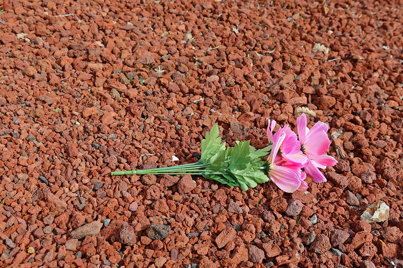 fake flower in rocks