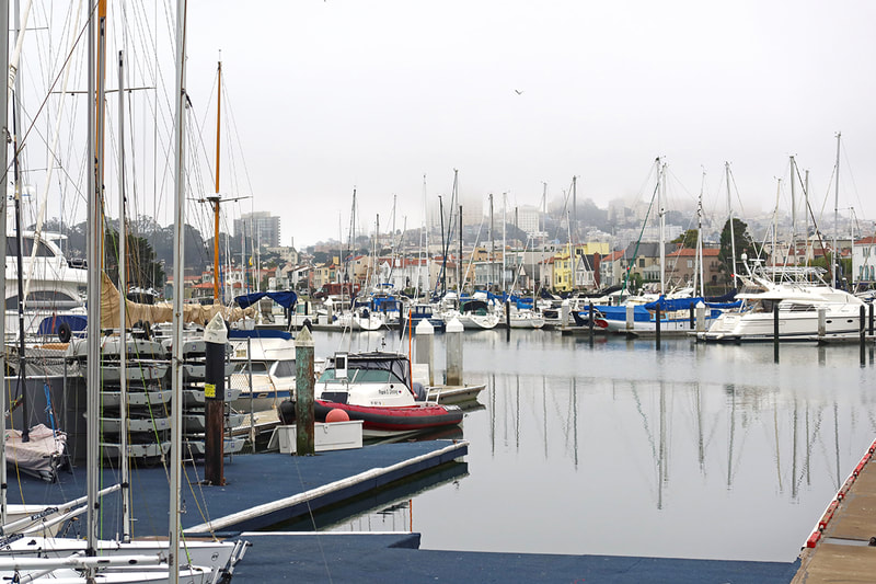 marina in San Francisco