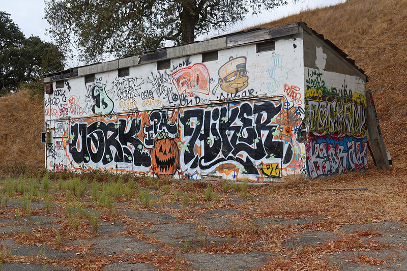 pumpkin graffiti